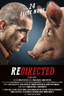 Redirected (2014) (BR Rip) - Hollywood Movies Hindi Dubbed